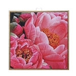 Coral Peonies Blooming Framed Canvas Wall Art
