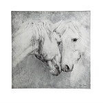 Meeting Face to Face - Horse Wall Canvas